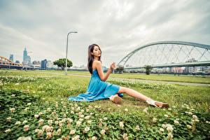 Bilder Asiatische Kleid Sitzend Gras junge Frauen
