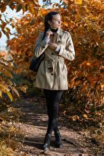 Wallpapers Autumn Purse Pose Coat Brunette girl Meggi female