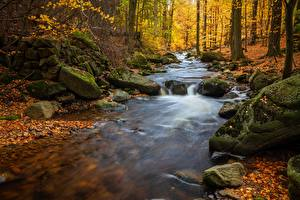 Wallpapers Autumn River Stones Foliage Moss Nature
