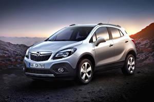 Papel de Parede Desktop Opel Crossover Prata cor Metálico Mokka, (Worldwide), 2012-16 carro