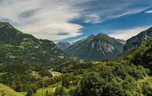 Tapety na pulpit Szwajcaria Góra Las Alpy Meiringen, Bern