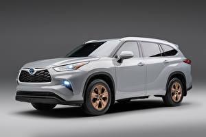 Обои Тойота Серый Металлик Highlander XLE Bronze Edition, (North America), 2021 Автомобили