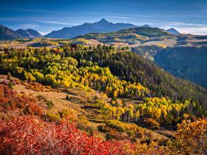 Bilder USA Herbst Berg Landschaftsfotografie Bäume Colorado Natur