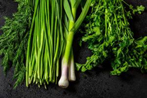 Fotos Gemüse Frühlingszwiebel Dill Grauer Hintergrund das Essen