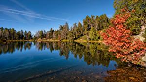 Images Andorra Lake Autumn Trees Estany de la Nou