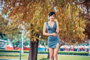 Pictures Asiatic Brunette girl Pose Gown Bokeh young woman