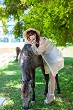 Pictures Asiatic Horse Pose Hat female Animals