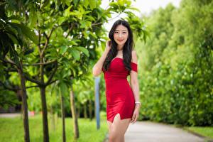 Wallpapers Asian Posing Frock Smile Staring female