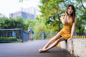 Images Asiatic Sit Dress Blurred background Legs Staring young woman