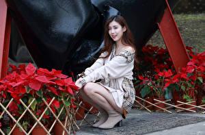 Hintergrundbilder Asiatische Sitzen Pose Blick Braunhaarige junge Frauen