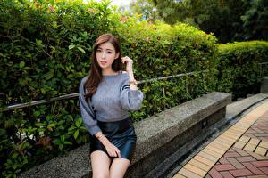 Bilder Asiatisches Sitzend Rock Sweatshirt Blick junge frau