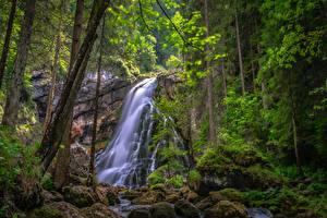 Bakgrunnsbilder Østerrike En foss Stein Trær Moser Golling Waterfall