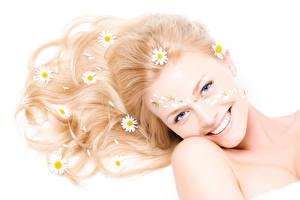 Photo Matricaria White background Glance Smile Hair Girls