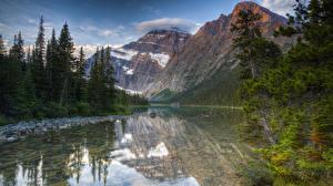 Fotos Kanada Park Berg See Fichten Laubmoose HDRI Jasper National Park Mount Edith Cavell Natur