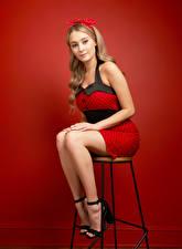 Bilder Stühle Sitzt Bein Kleid Starren Schleife Roter Hintergrund Mädchens