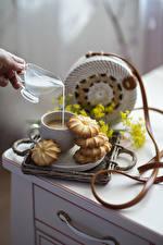 Fotos Kaffee Milch Kekse Tasse Lebensmittel