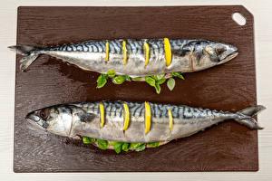 Bilder Fische - Lebensmittel Zitronen 2 Schneidebrett