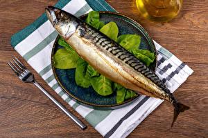 Image Fish - Food Plate Fork Food