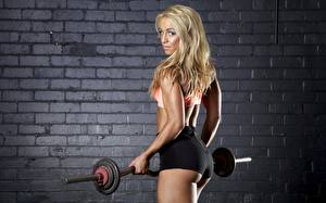 Picture Fitness Wall Made of bricks Blonde girl Glance Hands Barbell Shorts female