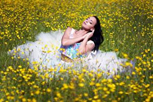 Fotos Grünland Brünette Sitzend Kleid Mädchens