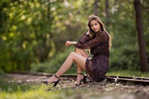 Desktop hintergrundbilder Sitzend Kleid Bokeh Bein Blick Lisa Mädchens