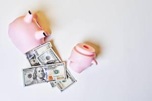 Fonds d'écran Monnaie Billet de banque Dollars Fond gris Cochon tirelire
