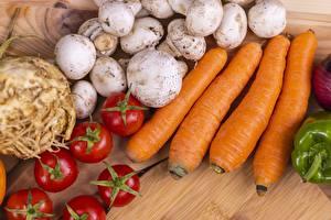 Fotos & Bilder Pilze Tomate Mohrrübe Lebensmittel