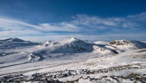 Fotos Norwegen Berg Parks Schnee Dovrefjell