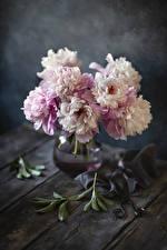 Fondos de escritorio Paeoniaceae Jarrón Flores