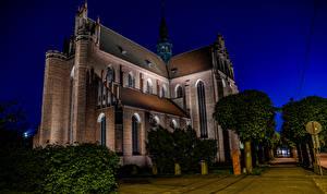 Bilder Polen Tempel Kirchengebäude Nacht Bäume Pelplin Cathedral Basilica
