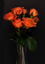 Papel de Parede Desktop Rosa Fundo cinza Laranja flor