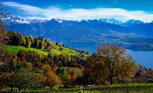 Wallpapers Switzerland Mountains Lake Trees Bernese Oberland Nature