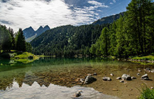 Wallpapers Switzerland Mountain Lake Alps Trees Lago de Palpuogna Nature