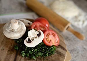 Fotos & Bilder Tomate Pilze Zucht-Champignon Schneidebrett Bokeh Geschnitten Lebensmittel