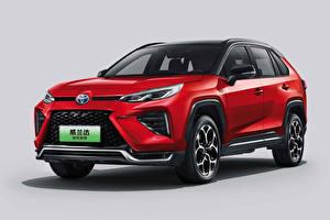 Papel de Parede Desktop Toyota Crossover Vermelho Metálico Fundo cinza Wildlander PHEV, 2021