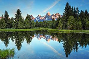Images USA Mountains Forests Lake Grand Teton National Park, Wyoming Nature