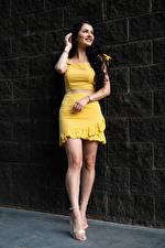 Hintergrundbilder Victoria Bell Brünette Lächeln Pose Bein Blick Mädchens