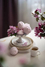 Wallpapers Zefir Coffee Cup Food