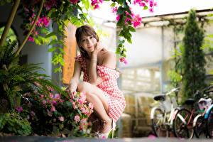 Hintergrundbilder Asiaten Bokeh Kleid Braunhaarige