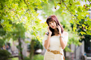 Wallpaper Asiatic Branches Pose Hands Glance Girls