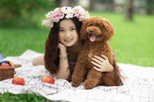 壁紙,亚洲人,犬,花圈,躺著,贵宾犬,微笑,女孩,