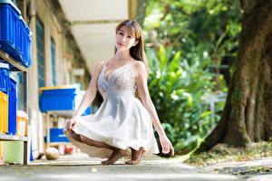 Hintergrundbilder Asiatisches Kleid Sitzen Starren junge Frauen