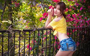 Bilder Asiatische Zaun Braune Haare Blick Lächeln Shorts junge frau