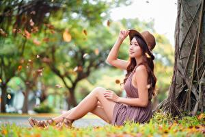 Bakgrundsbilder på skrivbordet Asiater Gräset Hatt Sitter Suddig bakgrund Sidovy Klänning Händer Ben ung kvinna
