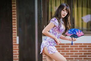 Hintergrundbilder Asiatische Posiert Kleid Fächer Blick Braune Haare