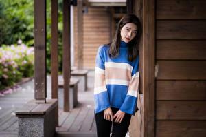 Bilder Asiatische Pose Hand Sweatshirt Starren junge Frauen