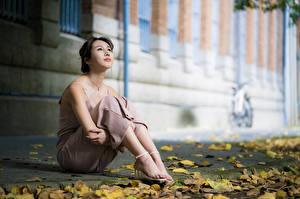 Bureaubladachtergronden Aziaten Pose Zittend Bladeren Benen Bokeh Kijkt Jonge_vrouwen