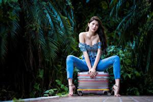 Fotos Asiaten Posiert Sitzend Koffer Bein Jeans Starren Mädchens