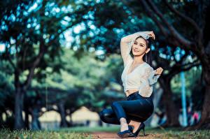 Bakgrundsbilder på skrivbordet Asiater Pose Sitter Byxor Blus Suddig bakgrund ung kvinna