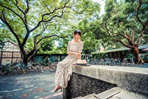 Fondos de escritorio Asiático Sentado Vestido Sombrero de Contacto visual Chicas